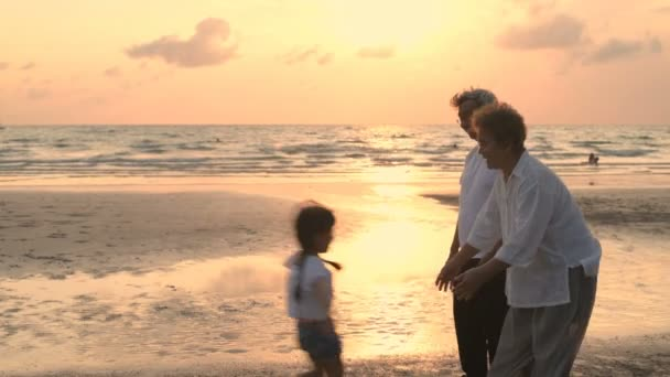 Family concept. Parents and children meet grandparents at the seashore. 4k Resolution.