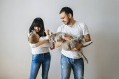 Fotografie portrait of happy parents holding little toddler boy and grey cat at home