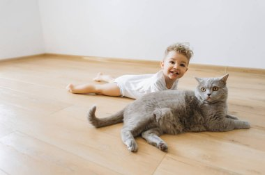 cheerful toddler boy and grey british shorthair cat lying on floor together at home