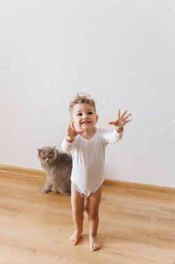 smiling toddler boy in white bodysuit catching soap bubbles with grey cat near by at home