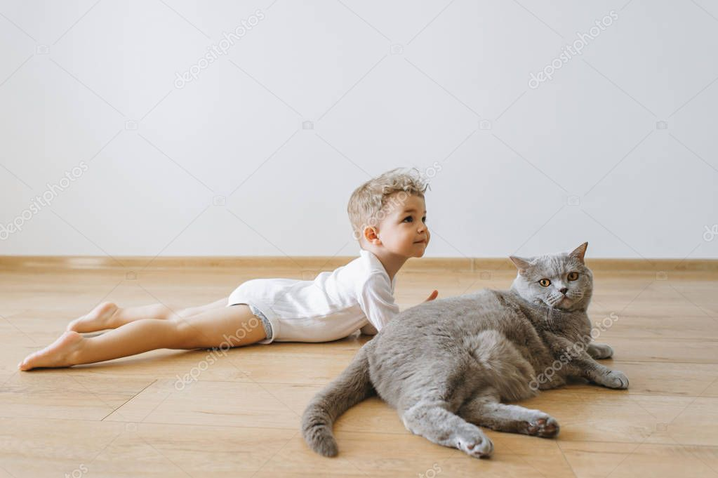 cute toddler boy and grey british shorthair cat lying on floor together at home
