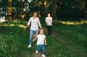 szelektív összpontosít, a családi szórakozás együtt erdő nyári napon
