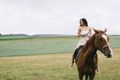Fotografia bella donna cavallo marrone sul campo