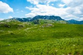 Photo green beautiful valley, mountains and blue sky in Durmitor massif, Montenegro