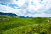 zelená tráva, hory a zamračená obloha v masivu Durmitor, Černá Hora