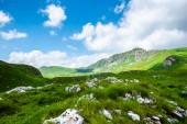 stones on grass in valley of Durmitor massif, Montenegro