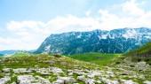 panoramatický výhled na zelené údolí s kameny v masivu Durmitor, Černá Hora