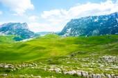 grünen Tal mit Steinen und Berge im Durmitor-massiv, Montenegro