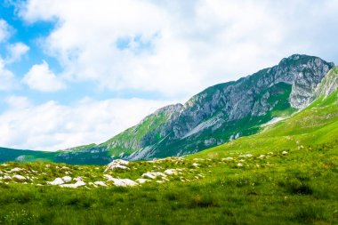 landscape of mountains and valley in Durmitor massif, Montenegro