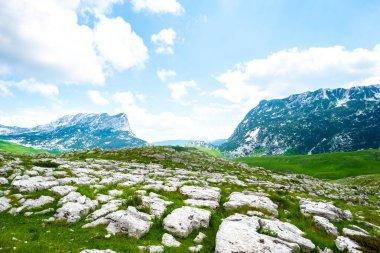 Green valley with stones in Durmitor massif, Montenegro stock vector