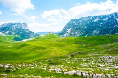 "Картина, постер, плакат, фотообои ""зеленая долина с камнями и горами в массиве дурмитор, черногория фото"", артикул 213241876"
