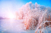 schöne Winterlandschaft Szene Hintergrund mit schneebedeckten tr