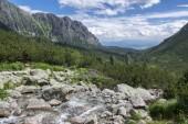 Mengusovské dolině, Hincov potok, úžasné kamenité stezky na vysoké hoře Rysy přes horské proudu, Vysoké Tatry, Slovensko