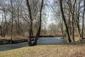 Nemosicka stran lesem na konci zimního času, slunce v větví, cesta přes úžasné přírodní oblasti, relaxační místo, částečně zamrzlé mrtvé rameno řeky Chrudimky