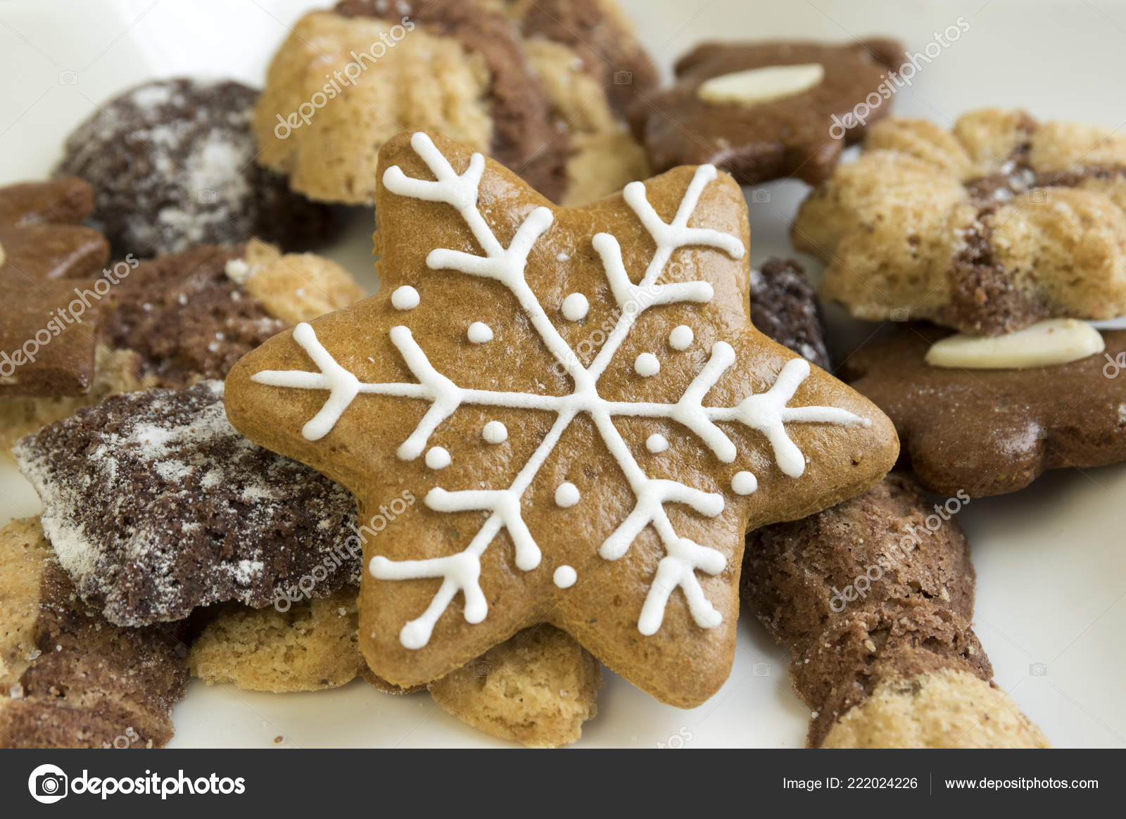 Many Kinds Christmas Cookies White Plate Gingerbread Dark Light Star