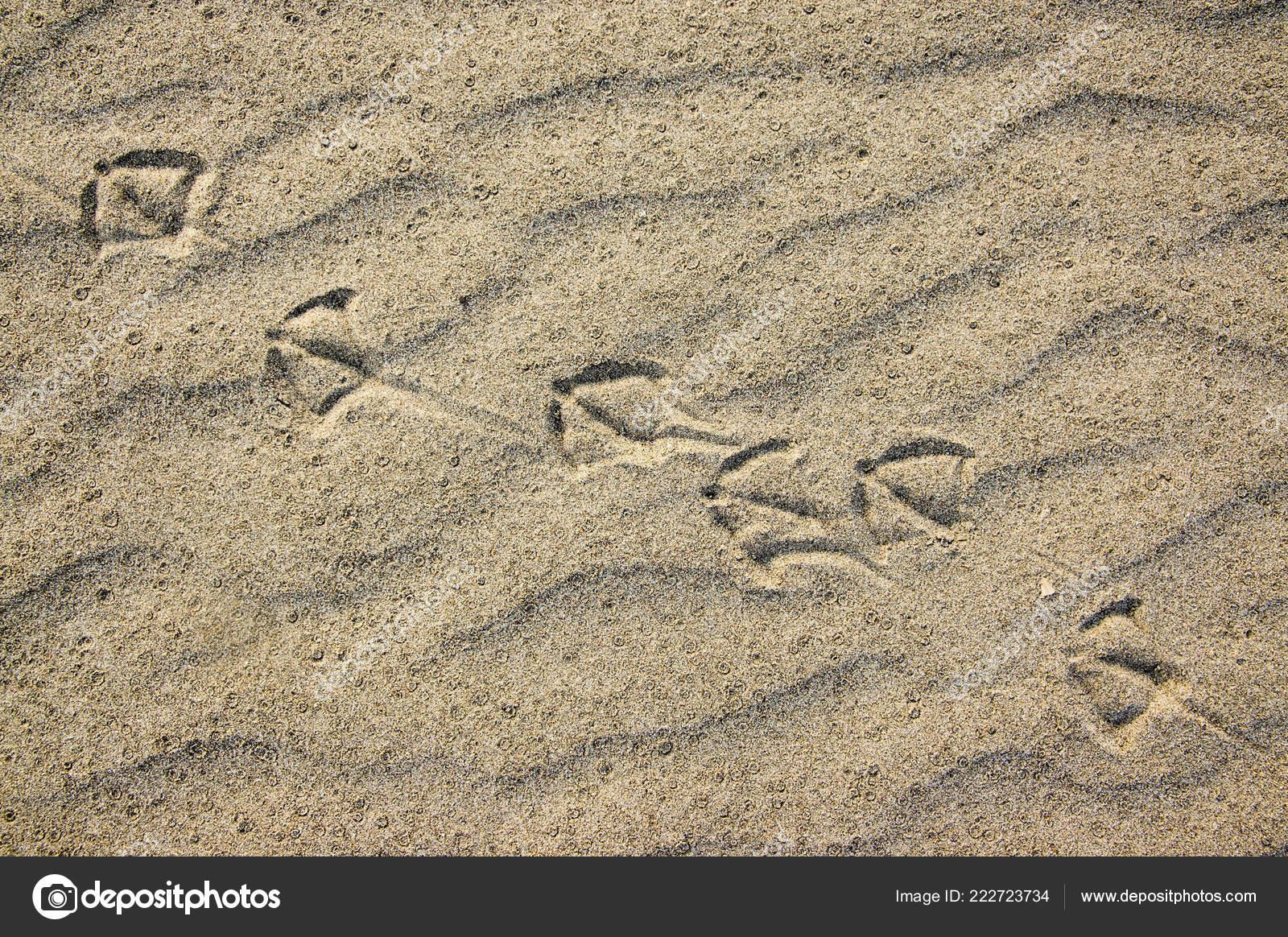 Sfondi scritte sulla sabbia