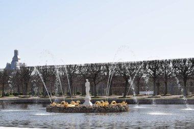Park topluluğu, parkın peyzaj tasarımı.