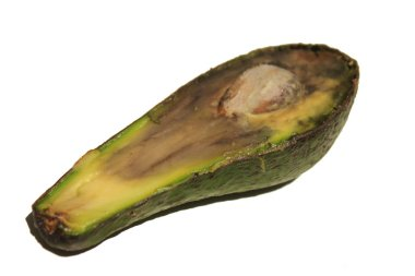 Overriped spoiled avocado slice with seed on a white background
