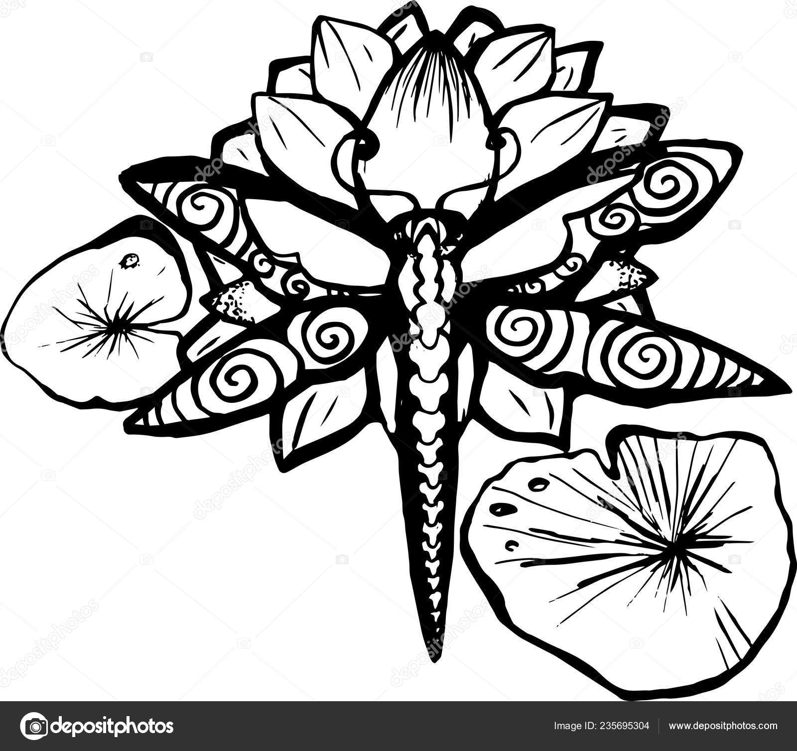 Pics Dragonfly Lotus Tattoo Picture Dragonfly Lotus