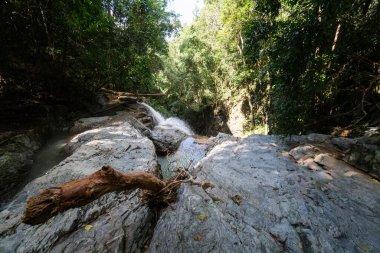 """Картина, постер, плакат, фотообои """"тайный тропический водопад в джунглях на острове самуи . санкт-петербург"""", артикул 381452842"""
