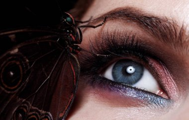 close up of beautiful female eye with eyeshadow and exotic butterfly sitting on her eyelid