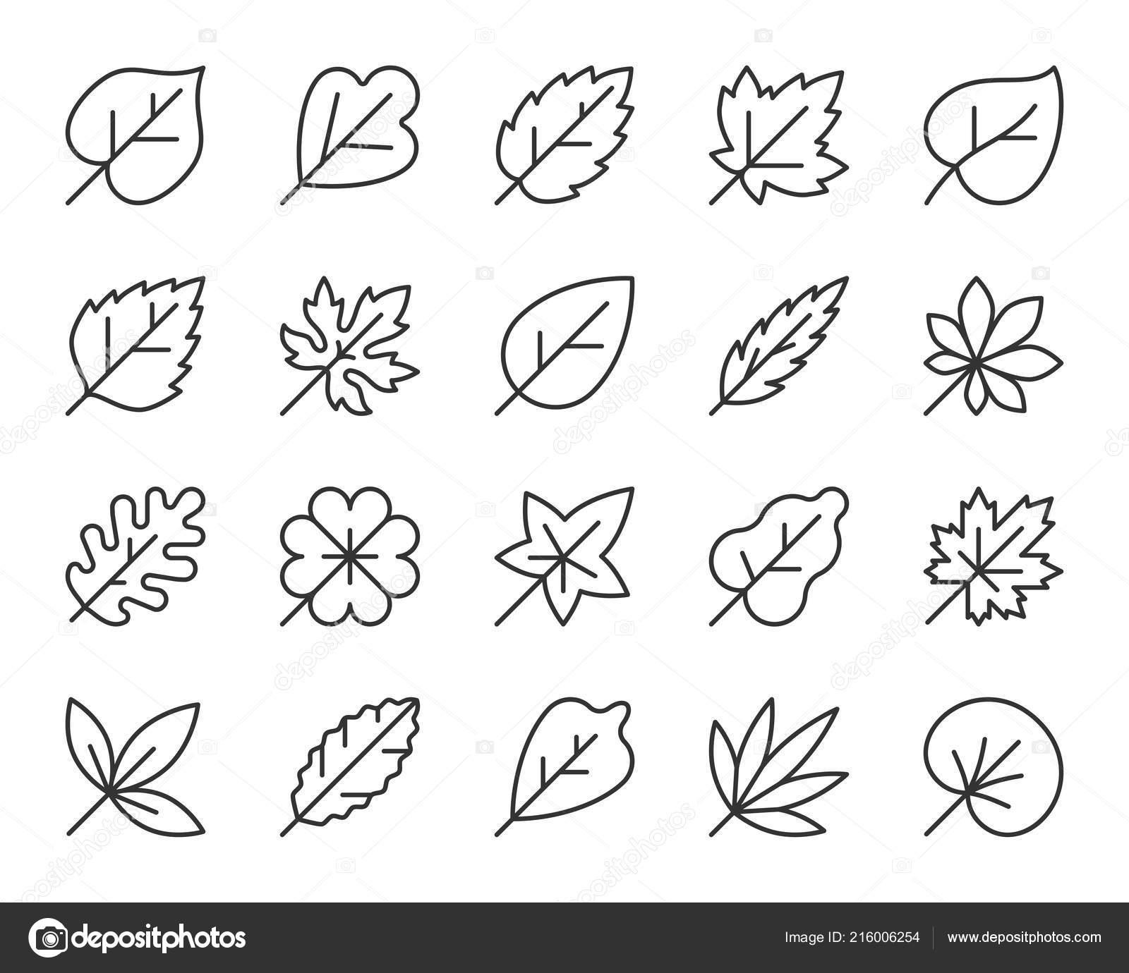 Clipart: simple leaf black and white | Organic Leaf simple ...