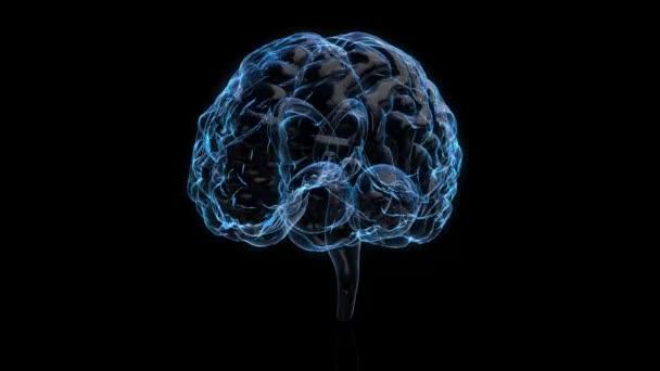 3D animace grafický design mozku. na pozadí alfa skla. Zobrazení mozku a točení s mri skenování v tvořivosti koncept modelu a zdraví.