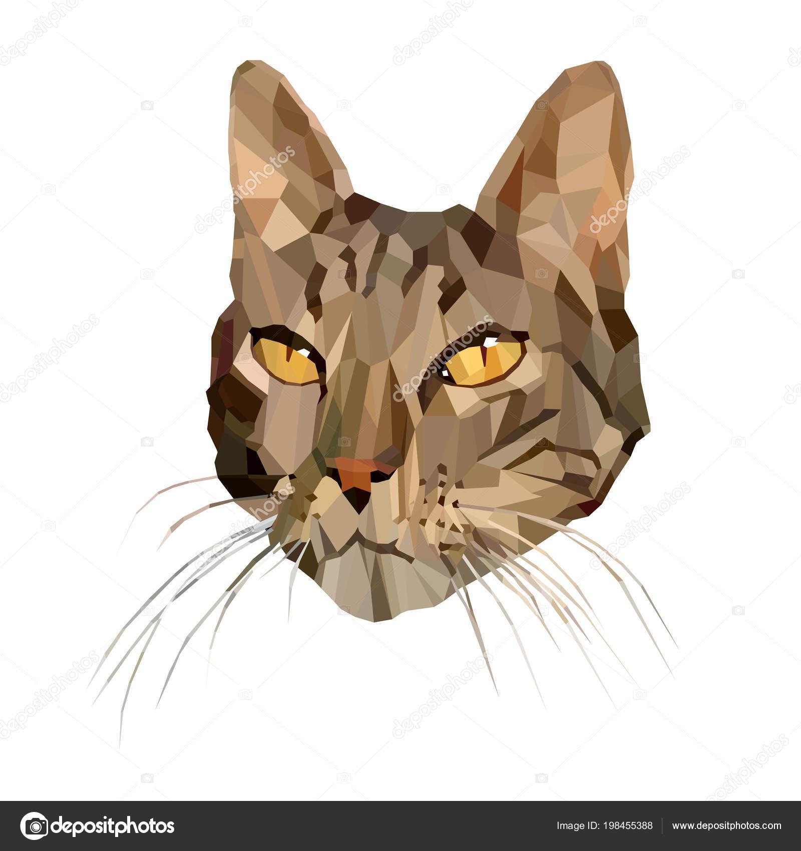 e1806269b359 Vector εικονογράφηση της γάτας σε χαμηλή Poly στυλ. Πολύγωνο αφηρημένη  γατάκι στην καφετιά χρώματα. Γεωμετρική πολυγωνικό γατάκι σιλουέτα —  Διάνυσμα με ...
