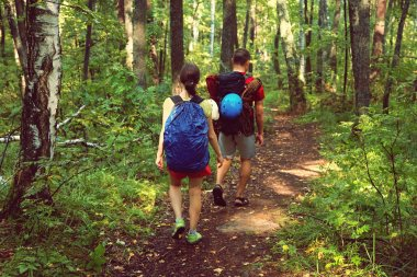 couple hikers in forest. sports man and woman with backpacks on road in nature