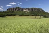 malebný pohled Pfaffenstein nízké Stolové hory, Labské pískovce, Sasko, Německo, Evropa