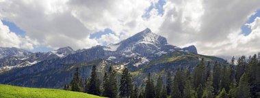 Panorama at Kreuzeck with Alpspitze and Zugspitze massif, Kreuzeckgruppe, Garmisch-Partenkirchen District, Upper Bavaria, Bavaria, Germany, Europe stock vector