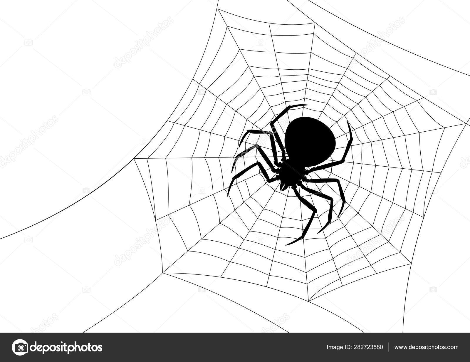 Background With Black Widow Spider Stock Vector C Incomible 282723580