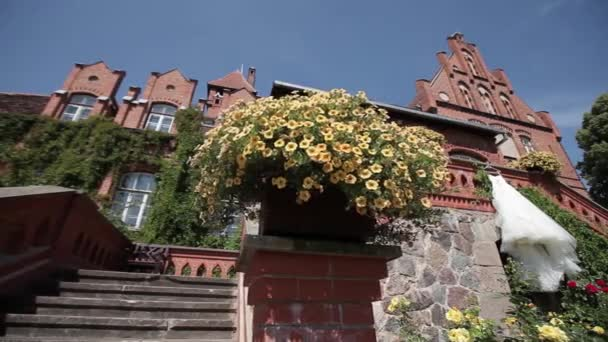 White wedding dress hanging near the wall of the red castle surrounded by flowers