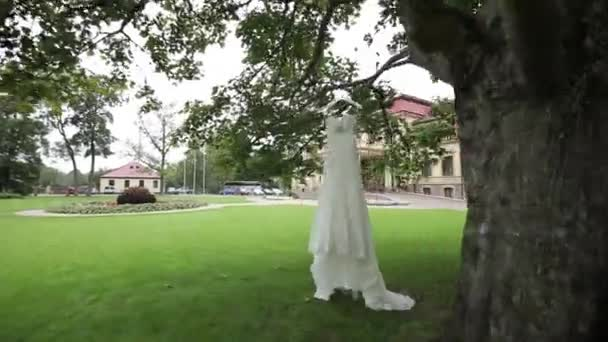 White wedding dress hanging on a tree near the castle