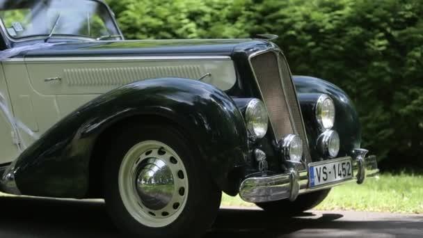 Vintage bílé auto s černou na asfaltové silnici v zeleném lese