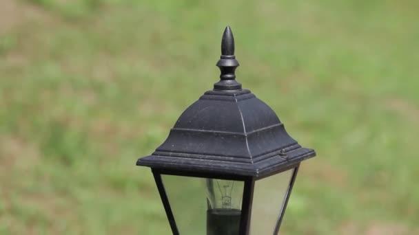 Pouliční lampa černé s brýlemi na pozadí zelené trávy