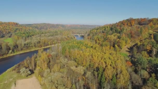 River and Forest in Autumn Sigulda city nature, Gauya, 4K drone flight, bridge car drive from above