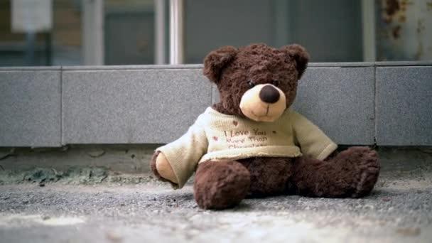 Teddy maci közelkép