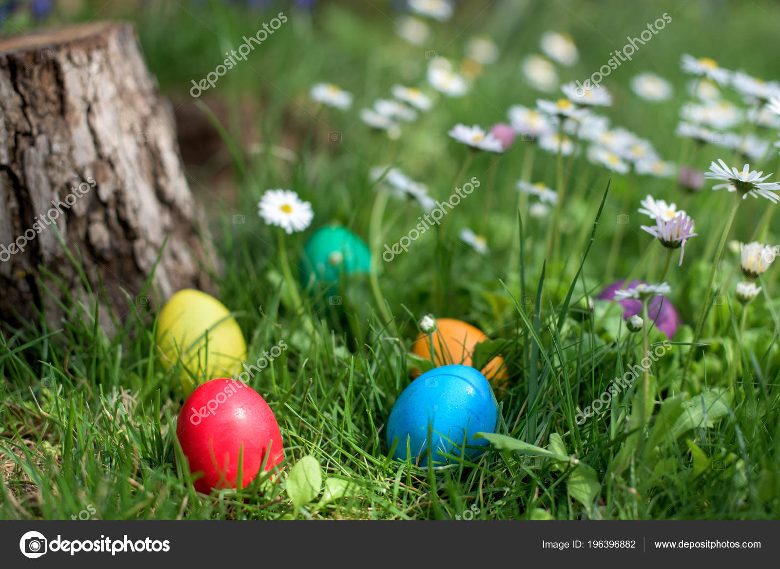 Six colorful Easter eggs hidden in a grass and flowers 10