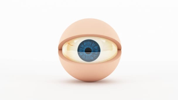 3D character eye - blinking. 3D animation of a cartoon eye blinking