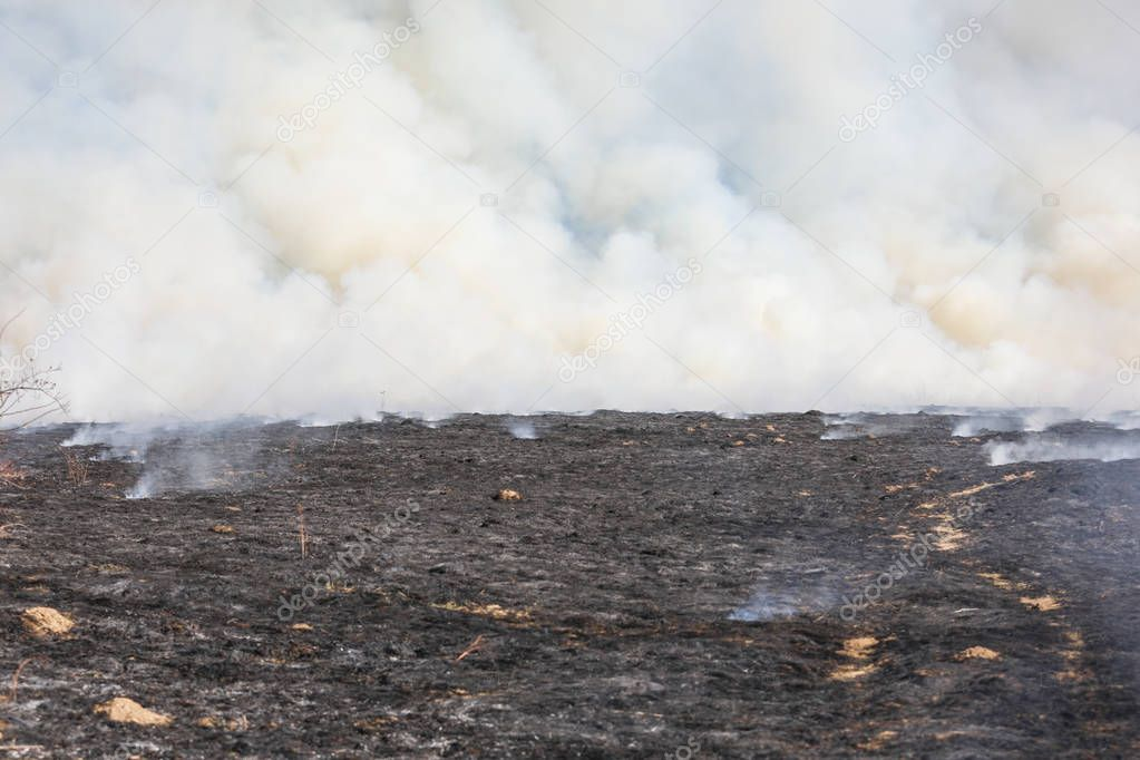 Bialy Dunajec, Poland - 23.3.2019 A huge fire of grass and bushes in 23.3.2019 in Bialy Dunajec, Poland