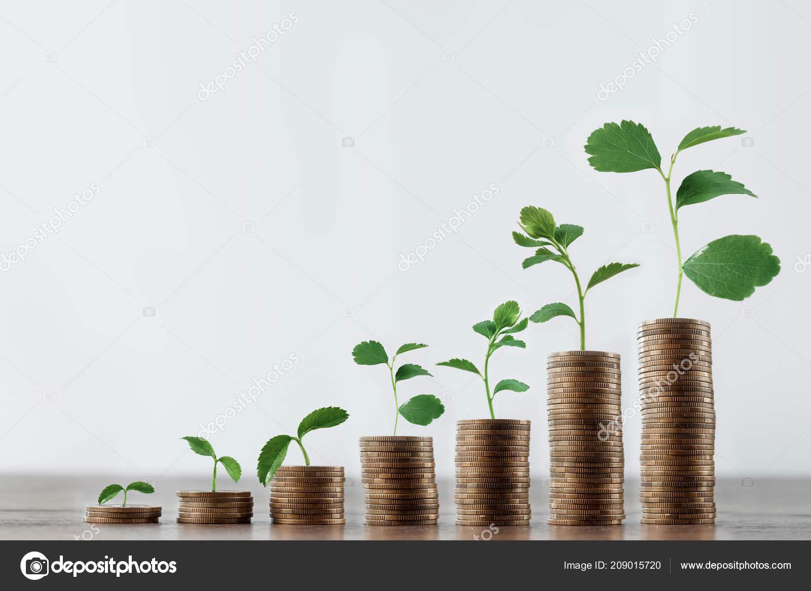 Инвестиционный кредит понятие