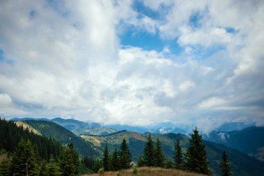 Mountain, beautiful landscape. Ukraine, the Carpathian Mountains. Concept of travel, tourism, holidays, vacation