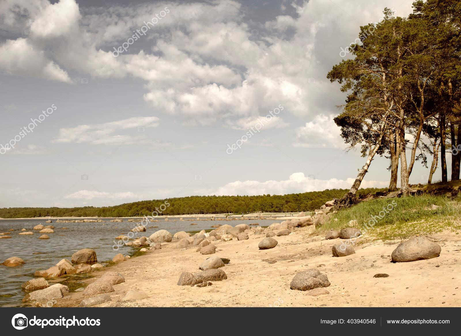 фото ольга и сыновья финский залив