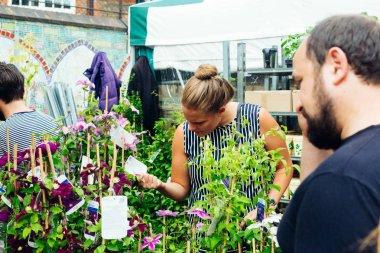 Woman choosing plants