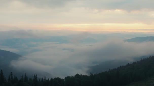 Timelapse. Nízká oblačnost pokrývající svazích pohoří Karpaty, západní Ukrajinu. Extrémní záležitost. Mraků plujících mezi svahy pokryté zelený les. Přírodní krajina. Rozmazané pozadí