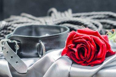 bdsm still life, black human collar, scarlet rose, hank of black rope for bondage (shibari) on a gray sheet on a black background