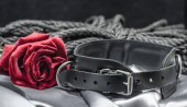 Photo bdsm still life, black human collar, scarlet rose, hank of black rope for bondage shibari on a gray sheet on a black background