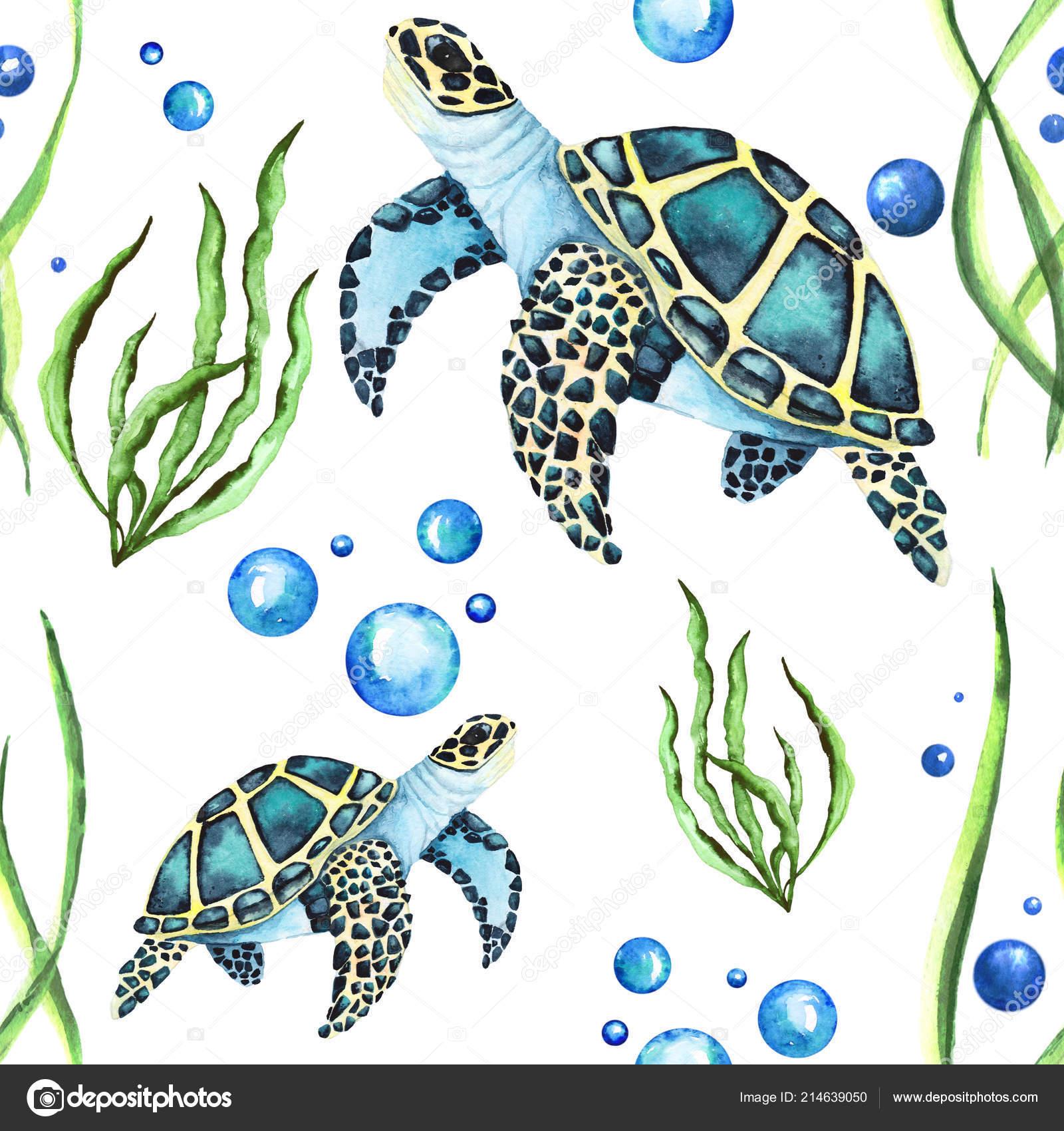 Deniz Kaplumbağaları Ve Deniz Yosunu Ve Kabarcıklar Ile Sulu Boya