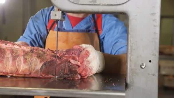 Továrna na zpracování masa. Detailní záběr pila na maso. Moderní vybavení závodu. Továrna na maso. Muž pracovník řezání syrového masa na ocelový pás řezací stroj. 4k